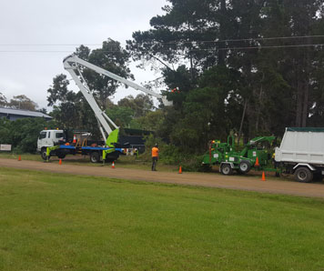 powerline-clearing-contractor-hobart