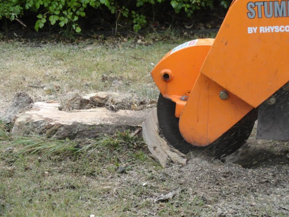 stump-grinding-hobart