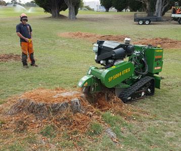 expert-in-stump-grinding