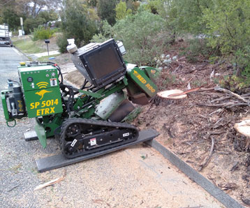 removing-tree-stump